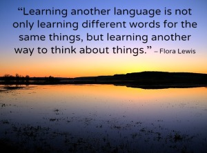 Picture for blog entry 2 learningaforeignlanguage